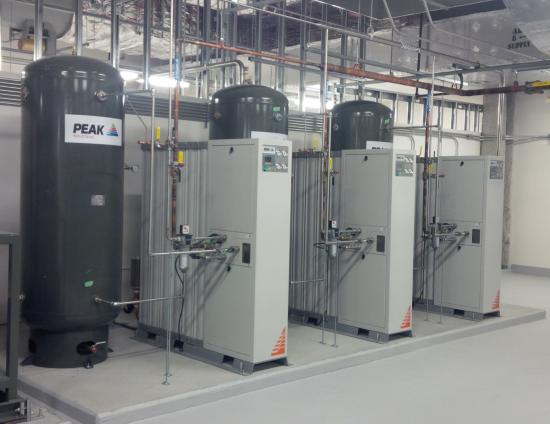 Peak Nitrogen Generators